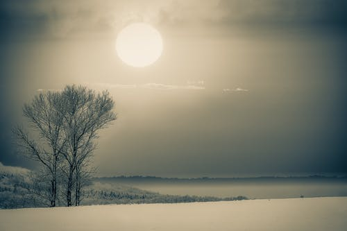 Free stock photo of black-and-white, cold, field