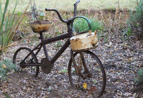 Black Bicycle With Green Plant in Brown Metal Pot