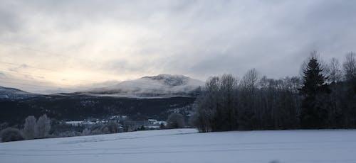 Fotobanka sbezplatnými fotkami na tému chladný, hora, hory, krajina
