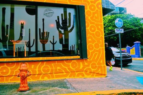 Foto stok gratis Desain, di luar rumah, foto jalanan, jendela