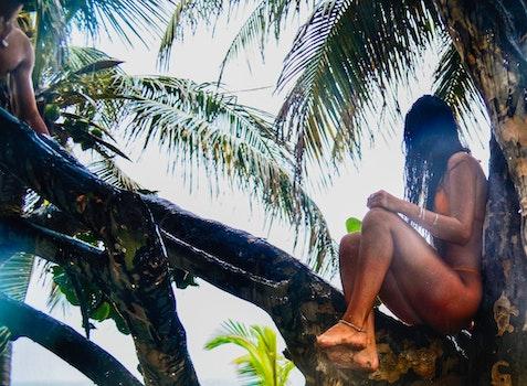 Woman Wearing Orange Bikini Sitting On Tree Branch