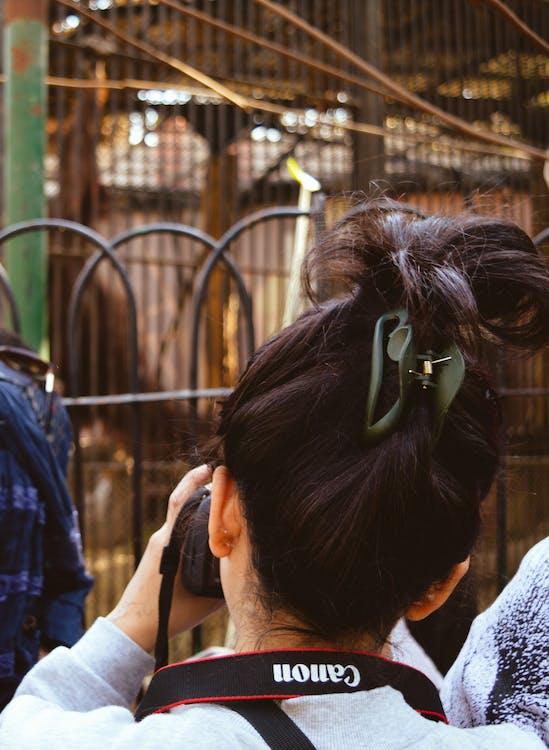 cabello, cabellos, cámara