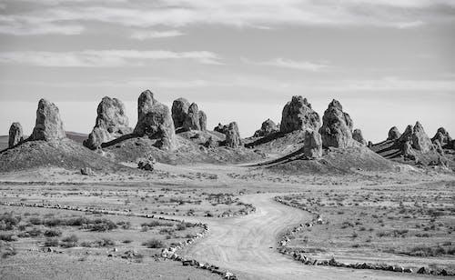 Základová fotografie zdarma na téma cestování, den, fotka