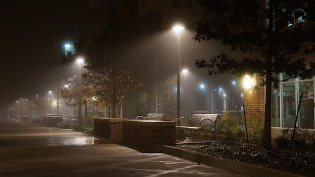 Free stock photo of bench, sidewalk, rainy, foggy