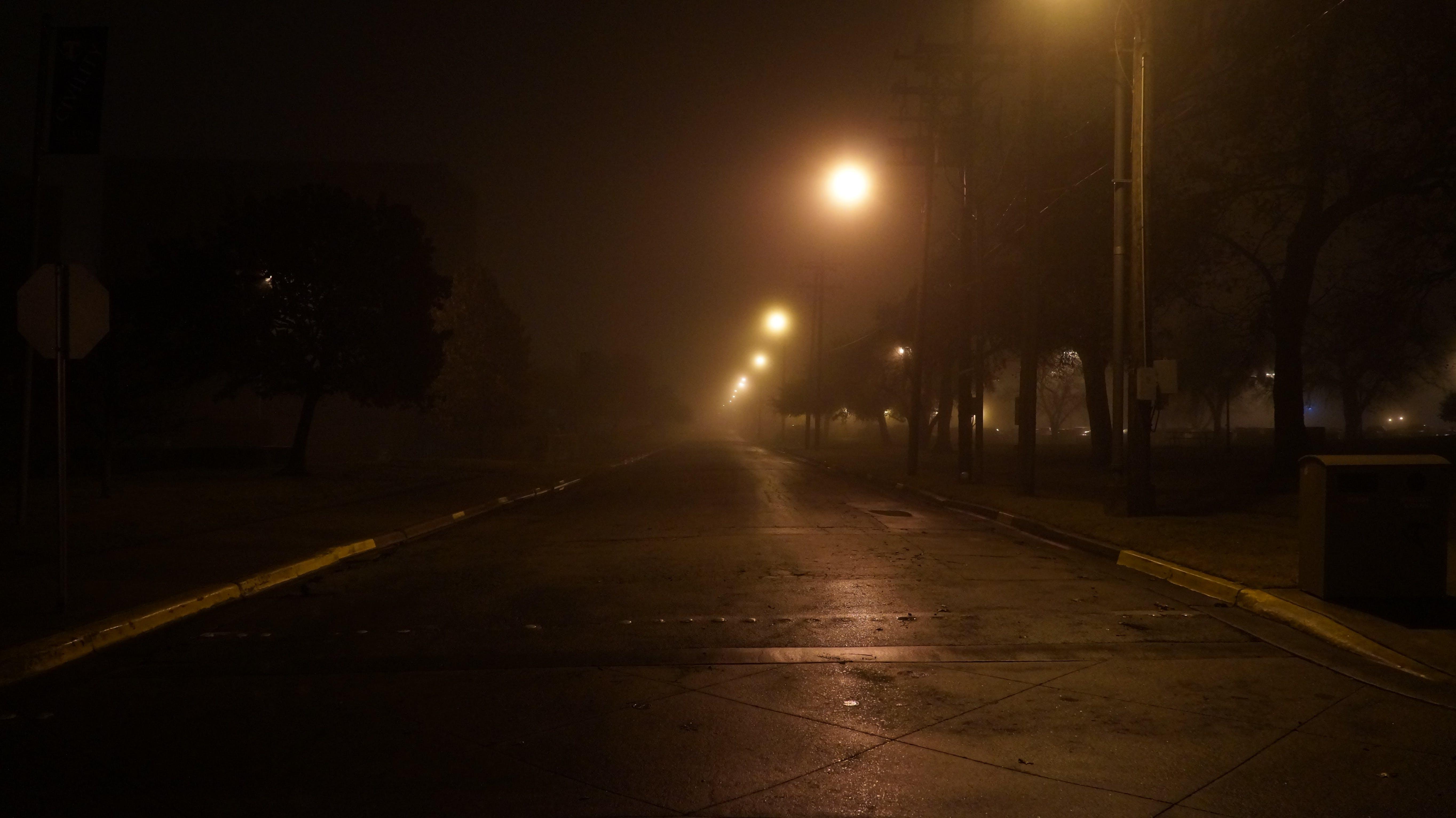 Free stock photo of creepy, damp, dark, foggy