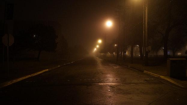 Free stock photo of night, street, dark, foggy