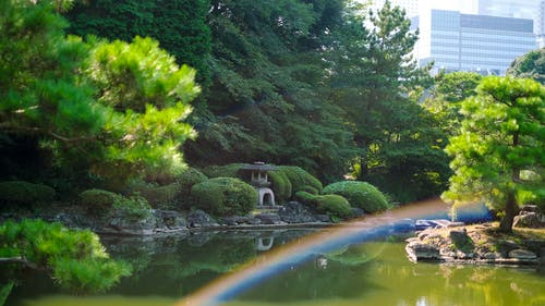 Immagine gratuita di arcobaleno, cultura giapponese, estate