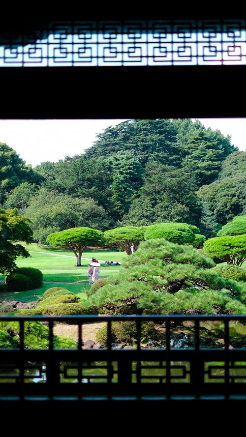 Immagine gratuita di cultura giapponese, dalla finestra, giappone