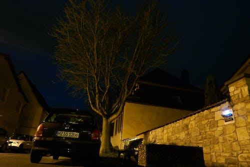 คลังภาพถ่ายฟรี ของ กลางคืน, ต้นไม้, ภูมิทัศน์กลางคืน