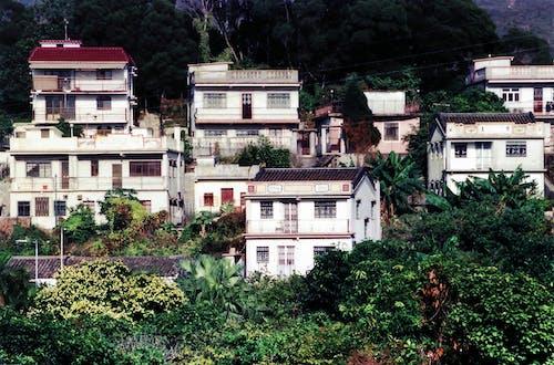 Free stock photo of hong kong, hongkong, new territories