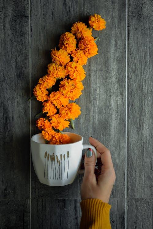 Yellow Flowers in White Ceramic Mug