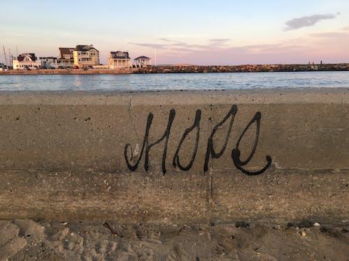 希望, 海岸, 海邊, 靈感 的 免费素材照片