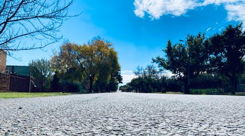 Photos gratuites de ciel bleu, gros plan, route