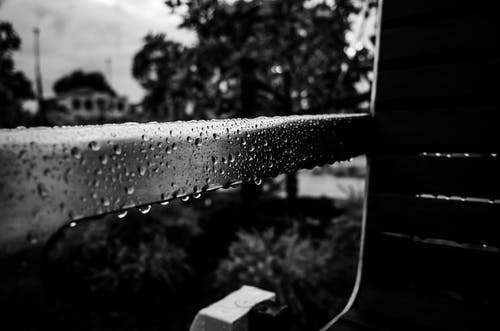 Free stock photo of bench, weather, wet
