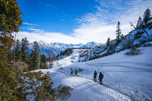 People Walking on Snow Covered Ground Near Green Trees Under Blue Sky