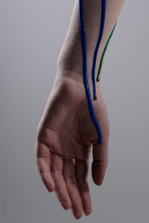 Gratis stockfoto met anatomie, anoniem, bodem