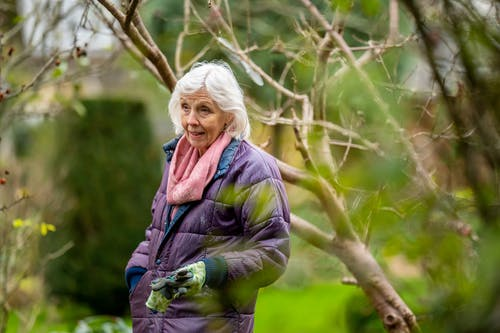 Woman in Green Jacket Standing Beside Brown Tree