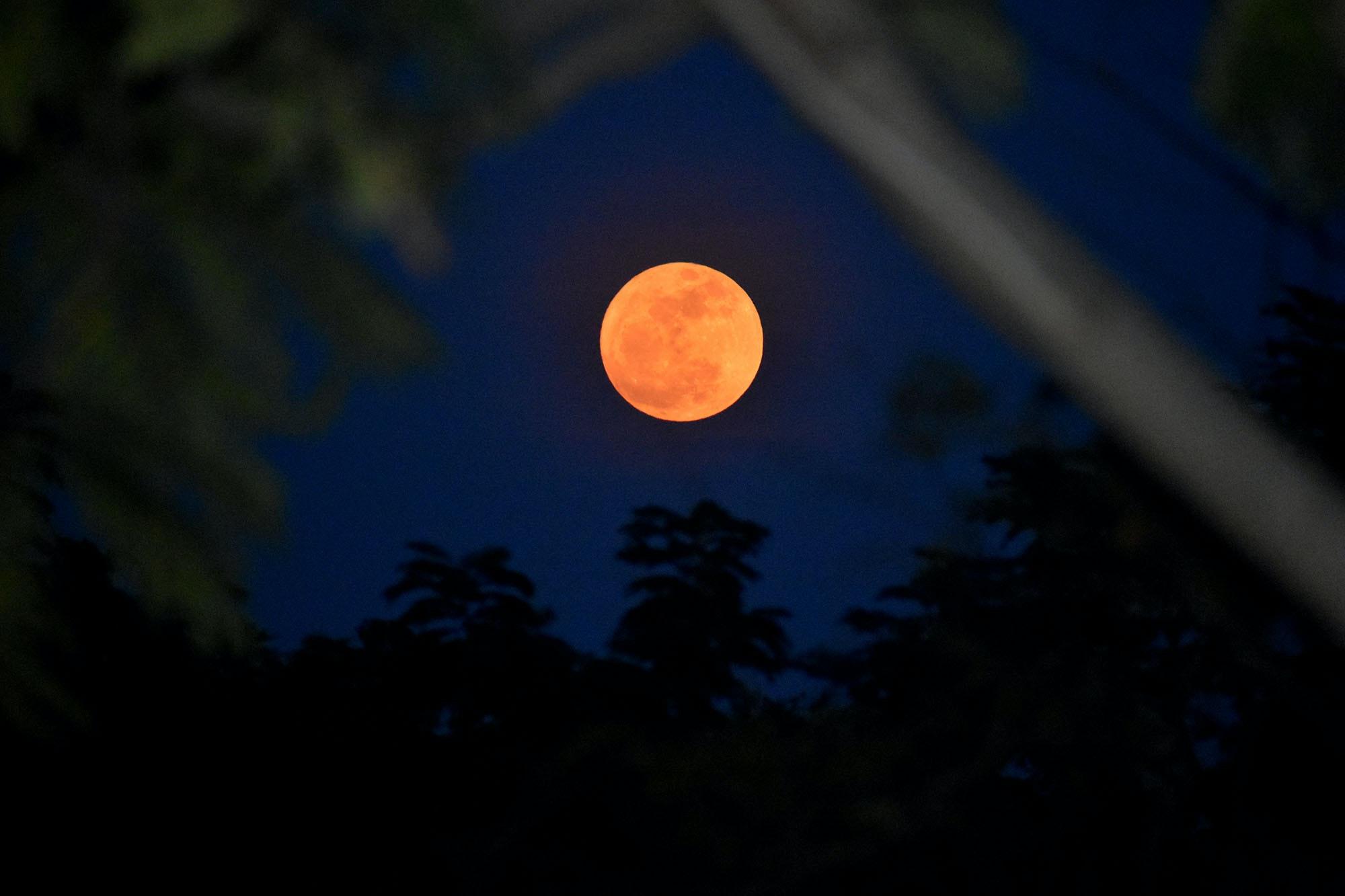 Free stock photo of super moon