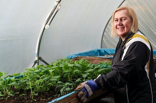 금발, 노인, 녹색 식물의 무료 스톡 사진
