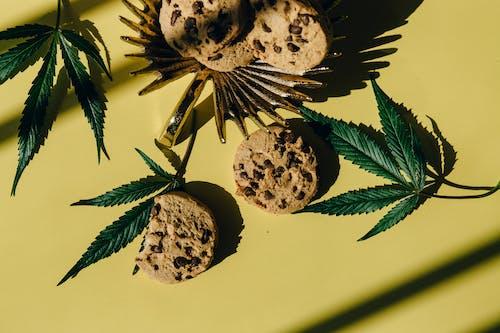 Gratis stockfoto met bladeren, bovenaanzicht, chocoladekoekjes