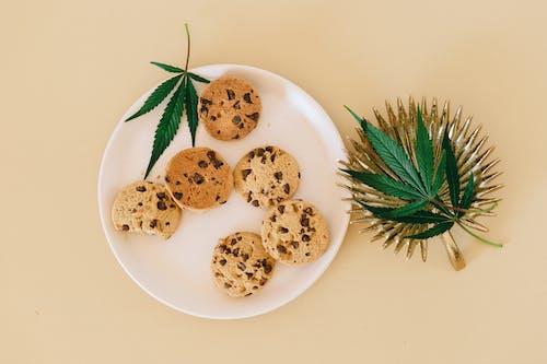 Foto profissional grátis de assados, biscoitos de chocolate, cânhamo