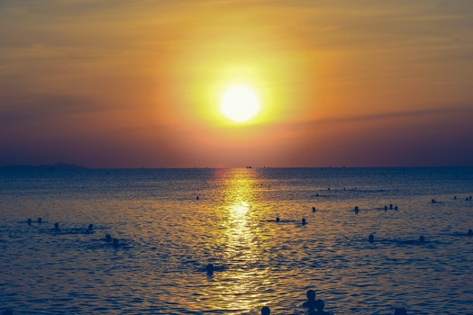 Silhouette of People Swimming in the Ocean During Sunset