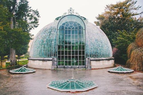 カルチャー, ガラス, ガラス窓, シティの無料の写真素材