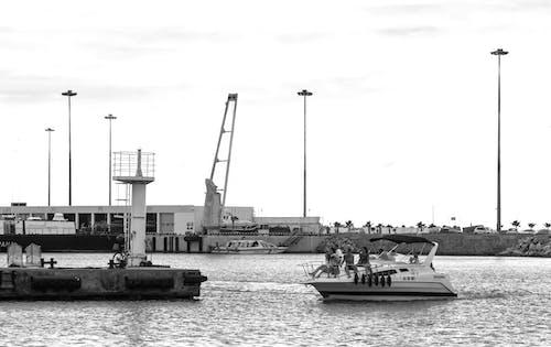 Základová fotografie zdarma na téma černobílý, člun, dok, dopravní systém