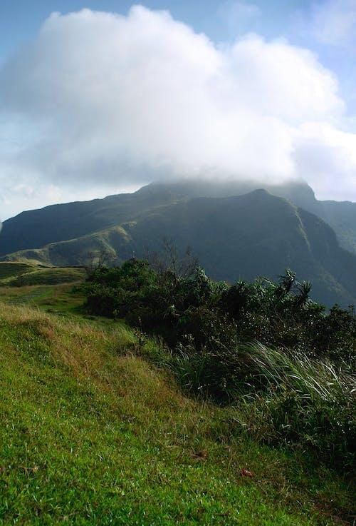 Free stock photo of cream topping, ilan county, mountains