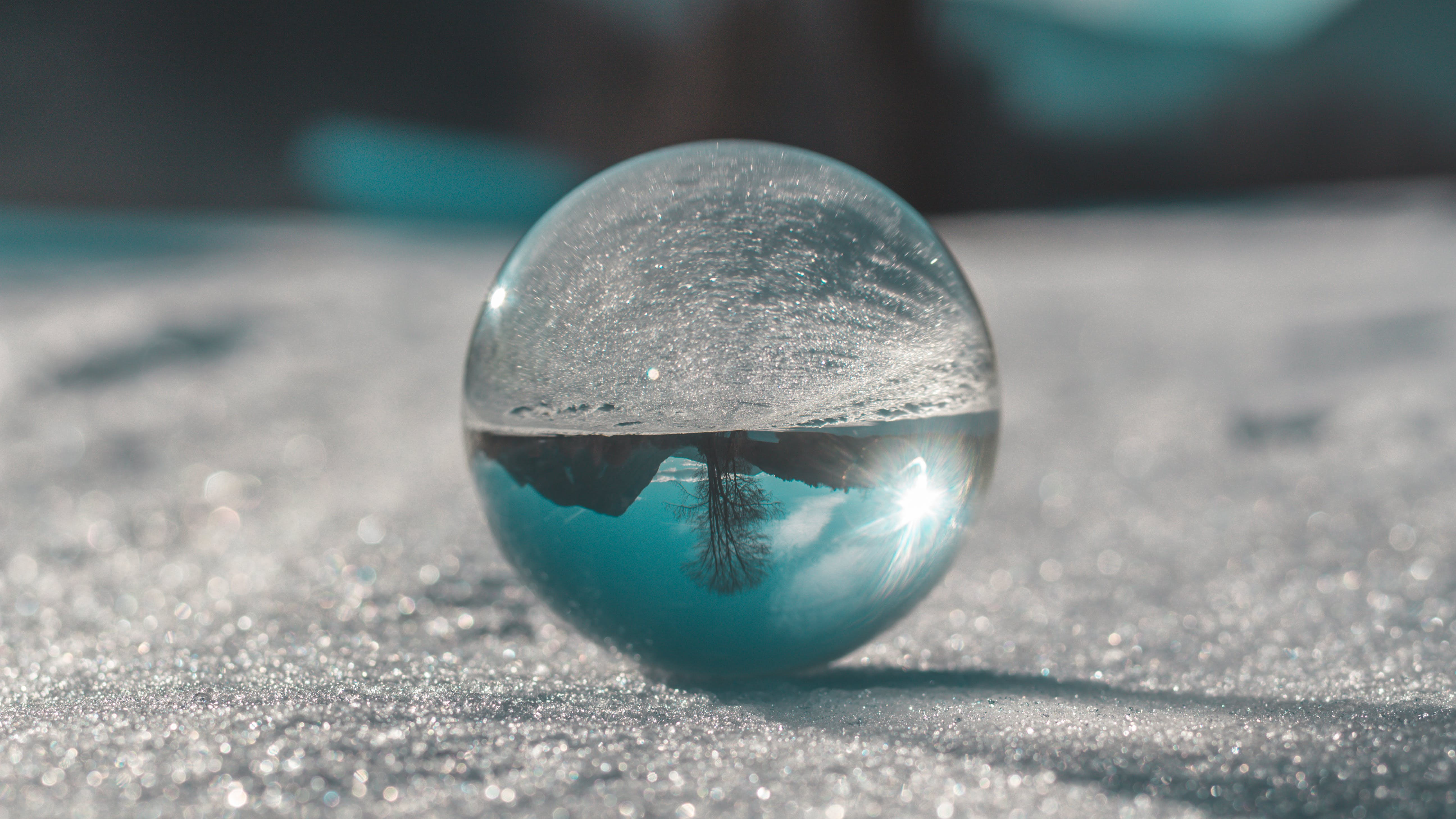 Free stock photo of ball, forest, glass, glassball