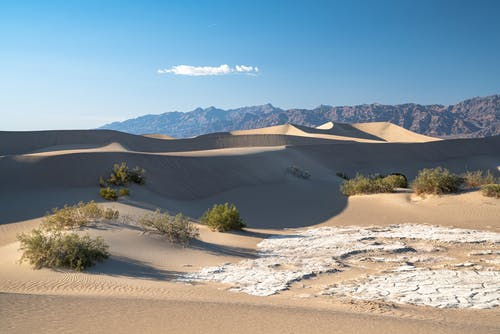 Sand Dunes Under a Clear Sky