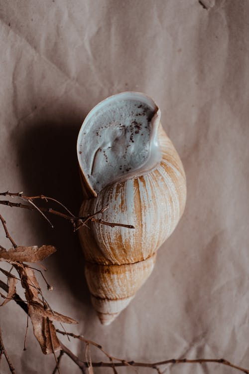 White and Brown Wooden Vase