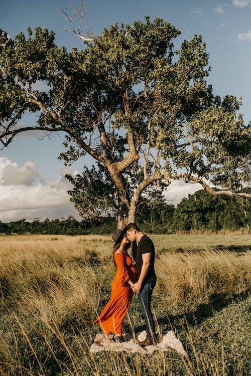 Бесплатное стоковое фото с Взрослый, дерево, дневной свет