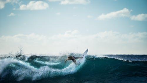 Základová fotografie zdarma na téma mac tapeta, mávat, modrozelená, moře
