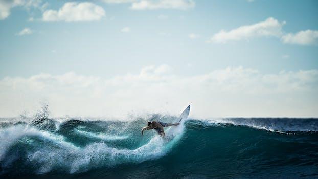250 great surfing photos pexels free stock photos