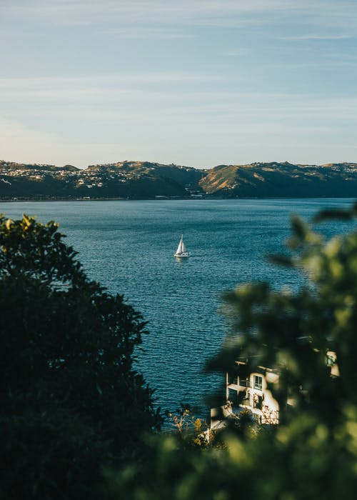 White Sailboat on Sea Near Green Trees