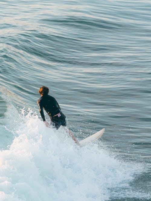 Man in Black Wet Suit Surfing on Sea