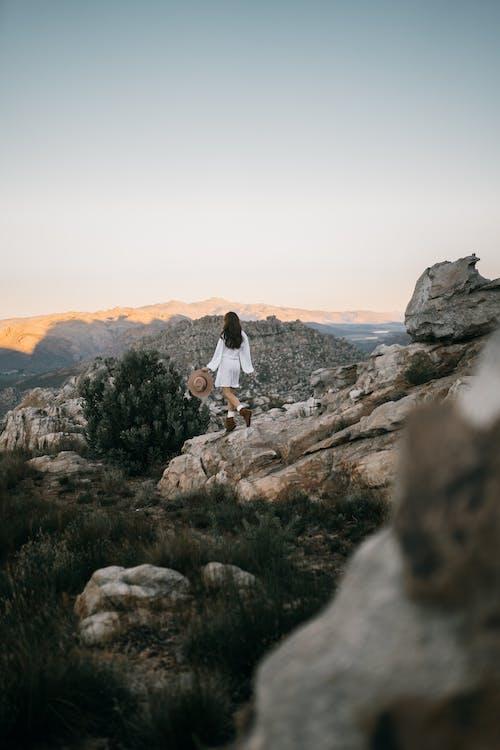 Free stock photo of adventure, adventurer, beauty in nature