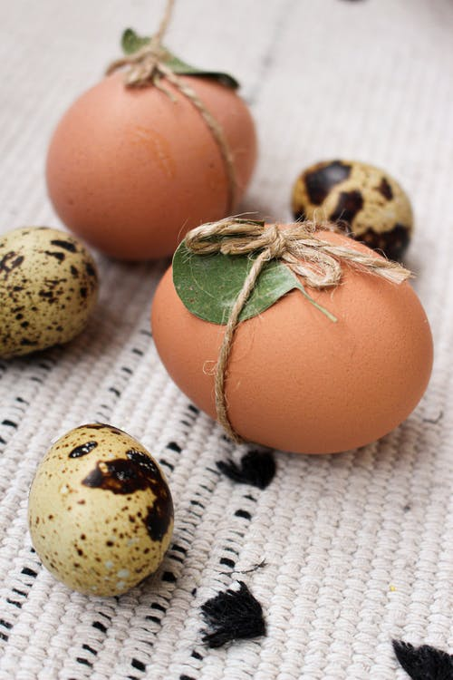 Brown Egg on White and Black Textile