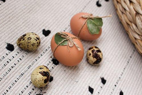 Free stock photo of basket, boiled egg, boiled eggs