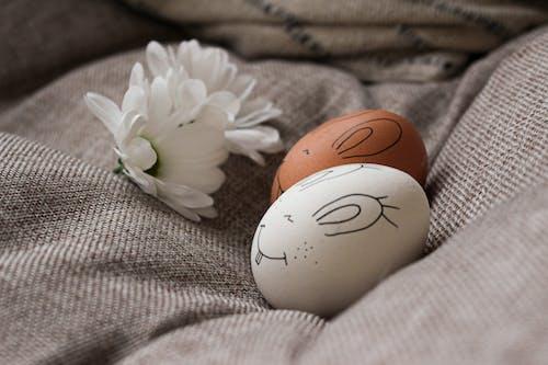 White and Brown Egg on White Textile
