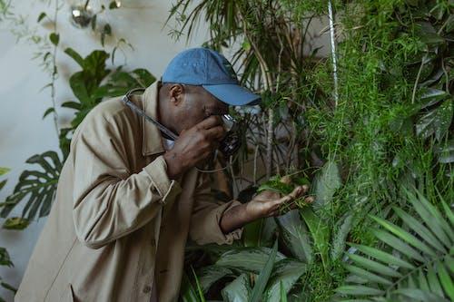 Free stock photo of adult, camera, decorative plants