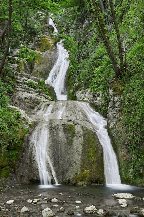 Free stock photo of acqua, cascade, cascate