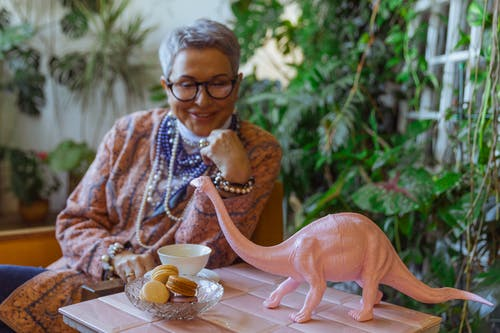 Photo of Eldelry Woman Looking at a Dinosour Miniature