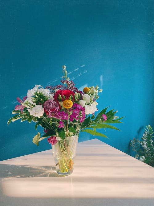 Free stock photo of birthday, blooming, bouquet