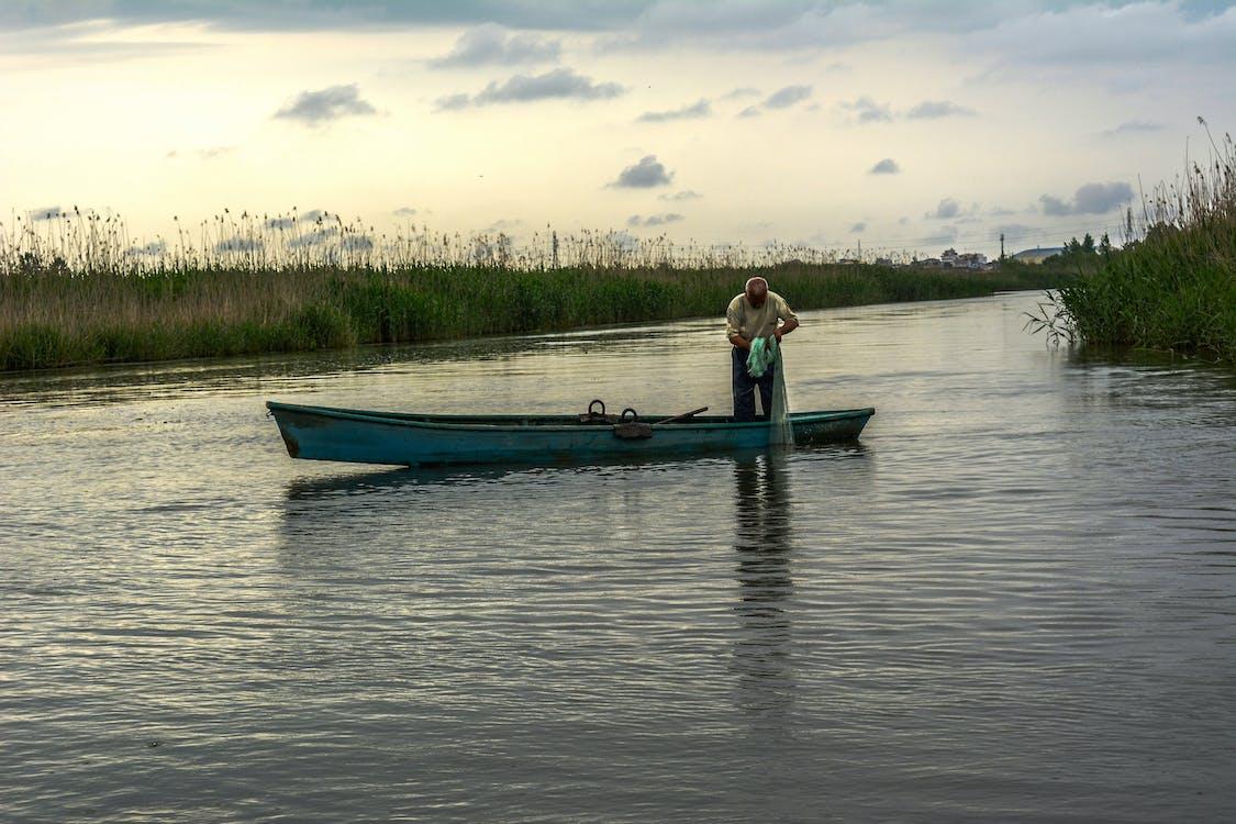 Free stock photo of fishing, nature, river