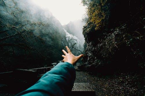 Gratis lagerfoto af bjerg, flod, folk