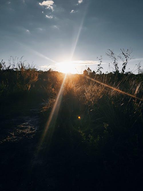 Fotobanka sbezplatnými fotkami na tému horské cestovanie, krásny západ slnka, zlaté slnko