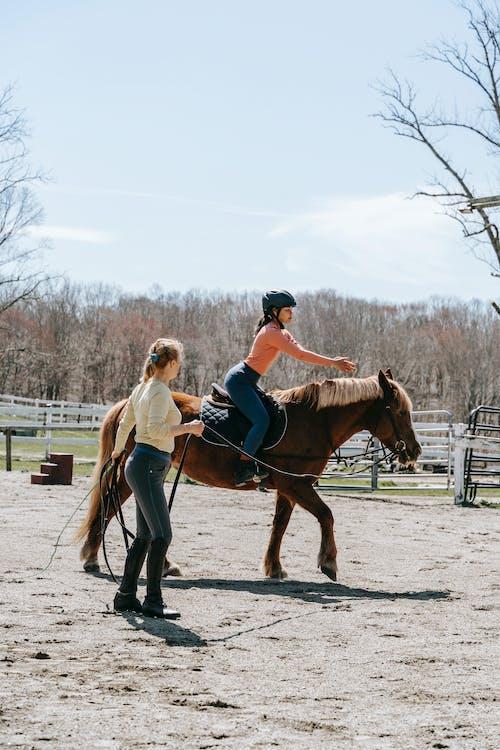 2 Women Riding Brown Horse