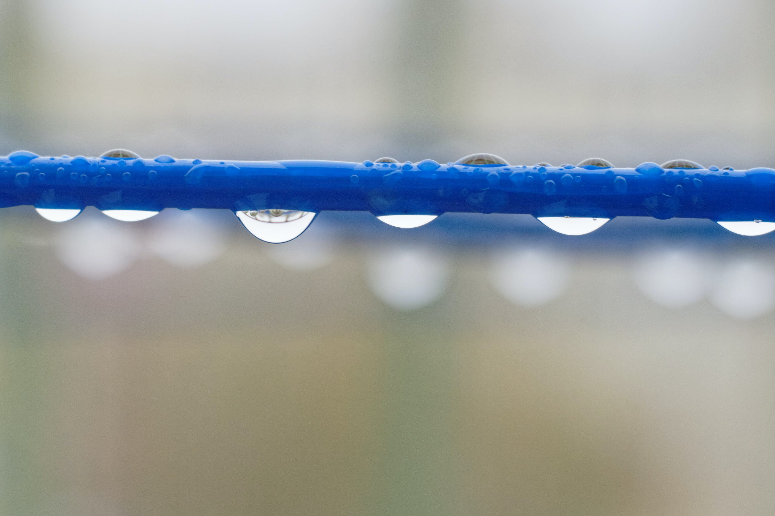 Free stock photo of water, droplets, theme water